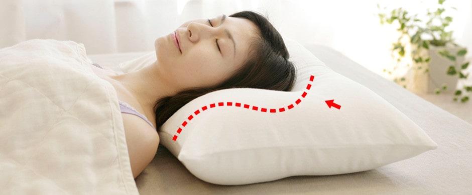 首の湾曲を支える夢枕